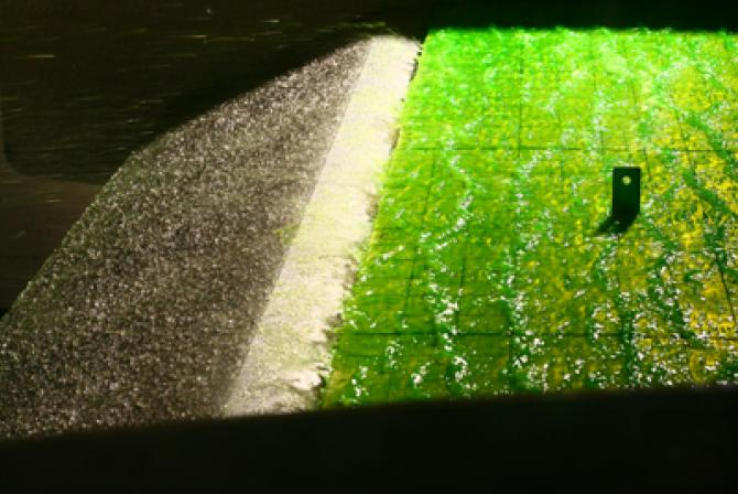 Clear and green liquids on an airplane wing