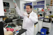 Researcher at work in the laboratory