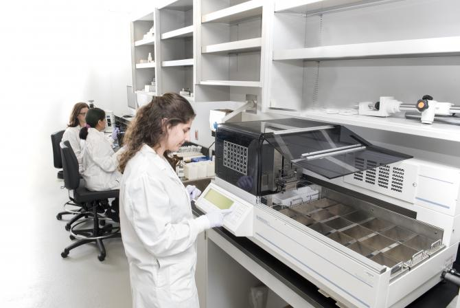 Researchers at work in the laboratory