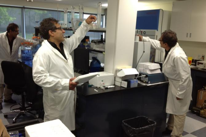 Staff at work in the laboratory