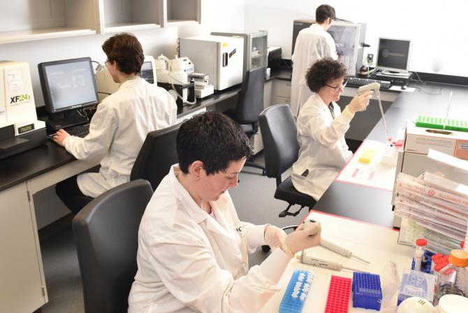 Researchers at work at the facility