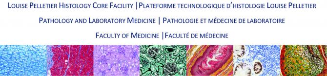 Louise Pelletier Histology Core Facility - Pathology and Laboratory Medicine - Faculty of Medicine