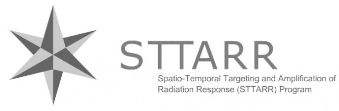 STTARR-Spatio-Temporal Targeting and Amplification of Radiation Response Program