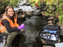 Researcher collects water samples from a river