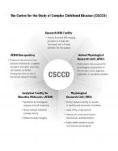 Organization chart for the Centre for Study of Complex Childhood Disease (CSCCD)